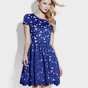 Vince Camuto Royal Blue Lace Overlay Party Dress